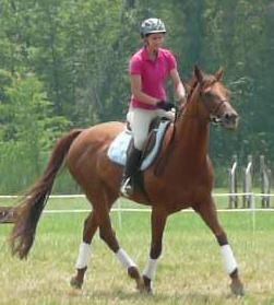 ellen-and-horse